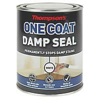 Thompsons One Coat Damp Seal White 750ml