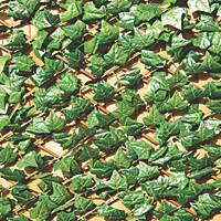 Apollo Willow Green Sweet Potato Leaf Expanding Trellis 2 x 1m
