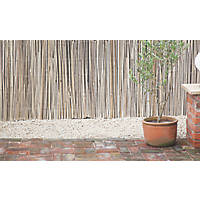 Apollo Bamboo Garden Screen 4 x 2m