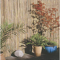 Apollo Bamboo Half Bamboo Garden Screen 4 x 1m